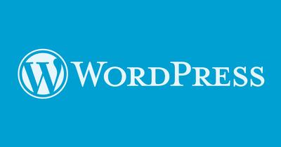 Fix WordPress errors or WordPress issues