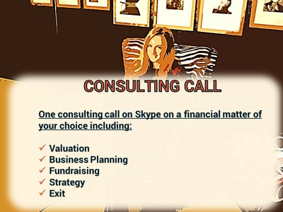 Provide a financial or strategic consulting session on Skype