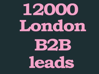 Give 12000 london b2b records