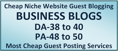 Write Content and Create Post on Business Websites