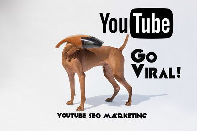Rank your Youtube Video #1 with SEO, Real Views,10 PR9 Backlinks