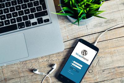 Provide a Three Month WordPress Website Care Plan