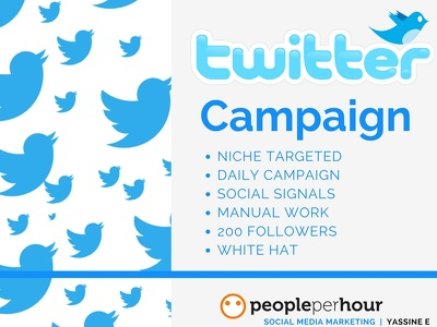 I will do 5 days Twitter campaign reaching your desired audience