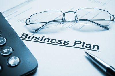 Write a professional business plan