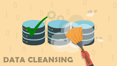 Perform 1 hour of data cleaning using Excel