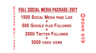 Provide Full Social Media Package -2017