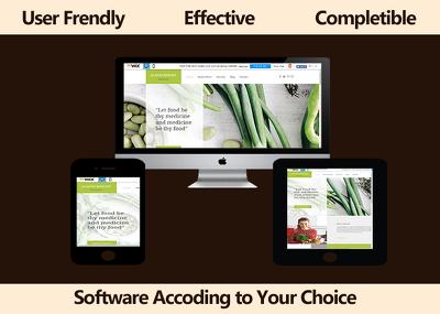 Develop SEO friendly Wordpress/CMS based Responsive Website