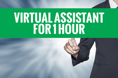 Be your Virtual Assistant for 1 HOUR