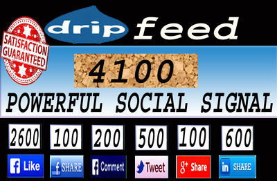 Build 4100 High quality drip feed social signal from top social site