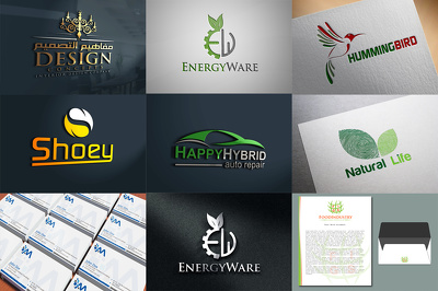 Silver Logo PKG/Brand Identity design services/Best value for money