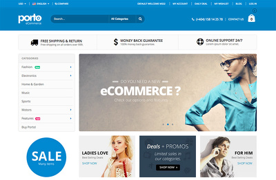 Design & Develop fully Responive Wordpress / Magento website with Porto premium theme