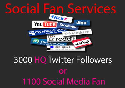 Add 3000 HQ Twitter Followers or 1100 Social Media Fan for Boost Business page