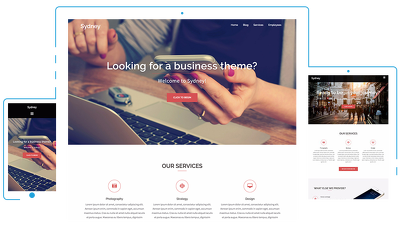 Build profissional wordpress website and customize
