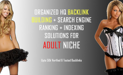 Build 25,000+ adult niche verified backlinks and dripfeed daily
