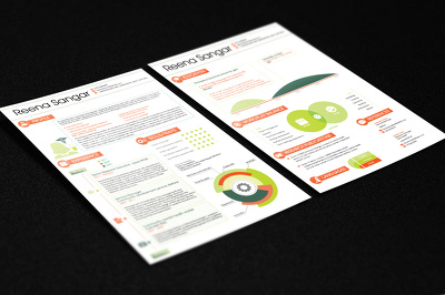Convert CV into an infographic