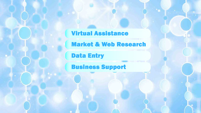 Provide 10 hours of virtual assistance
