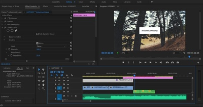 Edit and color grade your videos in 2 days