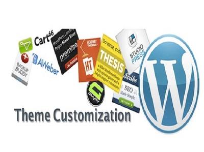 Customize any WordPress themes