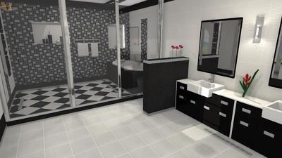 Design a bathroom