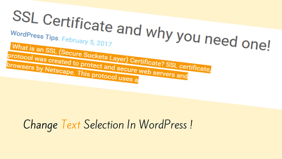 Change Text Selection color In WordPress