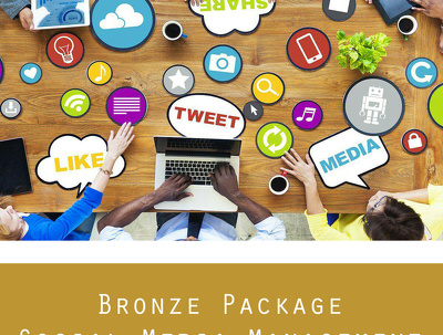 Manage your social media accounts for one month - BRONZE PACKAGE