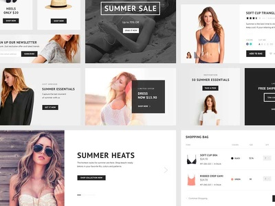 Design and development Ecommerce store upto  8 to 10  pages on WordPress CMS platform