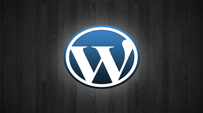 Install and customize wordpress script