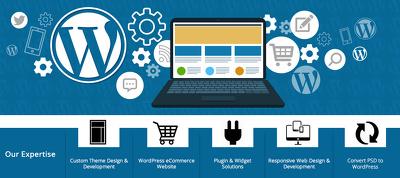 Design & Develop SEO Friendly Responsive WordPress Website with Logo,Email & Hosting