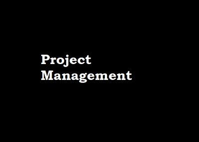 Assist you for 10 hours on project planning