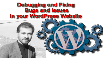 Debug and fix any WordPress or woocommerce Bug in less than 24 hours