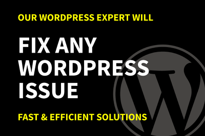 Fix Any WordPress Issue In Less Than 24Hrs