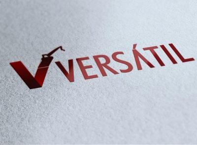 Design Versatile or 3D Logo Of Every Type