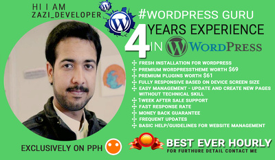 Design responsive wordpress website or blog