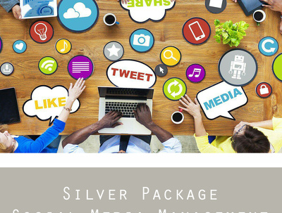 Manage your social media accounts - SILVER PACKAGE