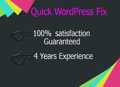 Provide instant to fix or customize your WordPress website