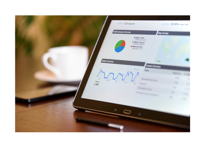 Provide you with an extensively detailed Website Audit report