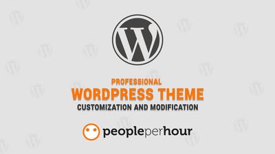1 Hours Professional WordPress Theme Customization Service