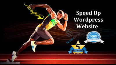 Optimise Wordpress SEO and provide premium plugins