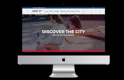 Make you Wordpress website like demo
