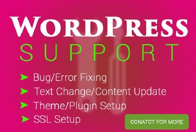 Wordpress support and maintenance - expert service