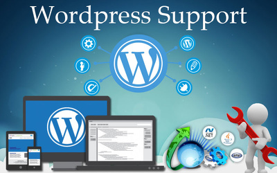 Provide Monthly Wordpress Theme Upgrade Support