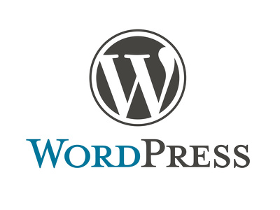fix Wordpress errors, issues and customize theme