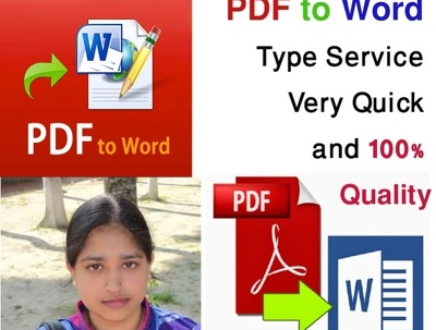 Do for you PDF to Word DOC file 25 page