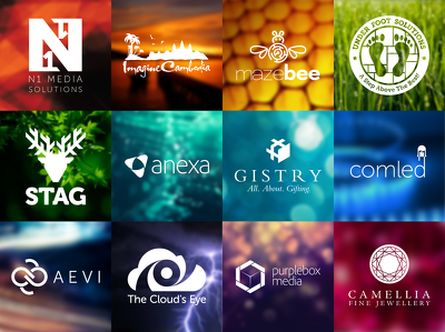 Design a Bespoke Logo  (3 Concepts with unlimited revisions) for your business /web