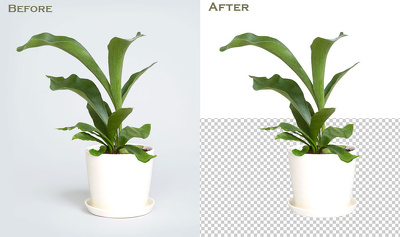 30 photo background removal by Photoshop professional