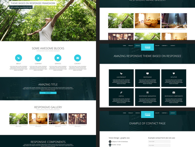 Instant pixel perfect 10 page responsive website with Html5 and css3, bootstrap