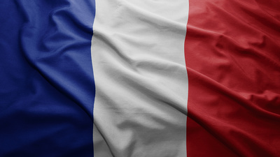 Translate a document from English to French (maximum 500 words - fast and smooth)