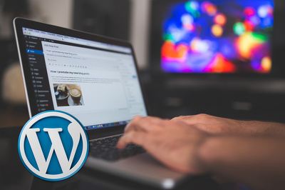 Install and Configure any premium wordpress theme which provides demo content
