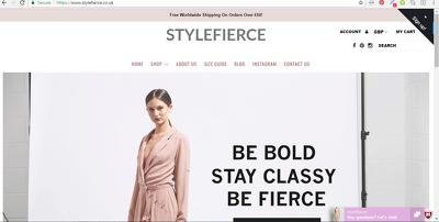 Setup your Shopify website (SEO friendly & mobile optimized)