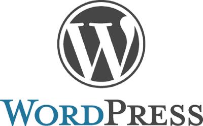 Do Wordpress installation with Your theme